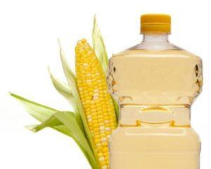 Gizi jagung