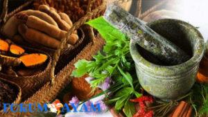 khasiat tanaman ramuan tradisional