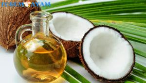 rahasia minyak kelapa
