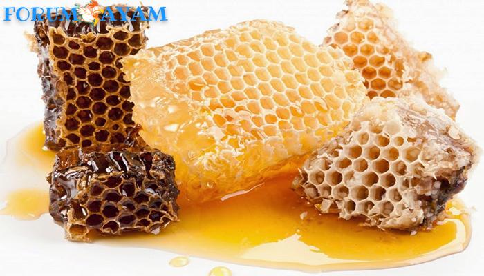 Manfaat madu murni