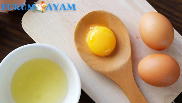 Manfaat Kuning Telur